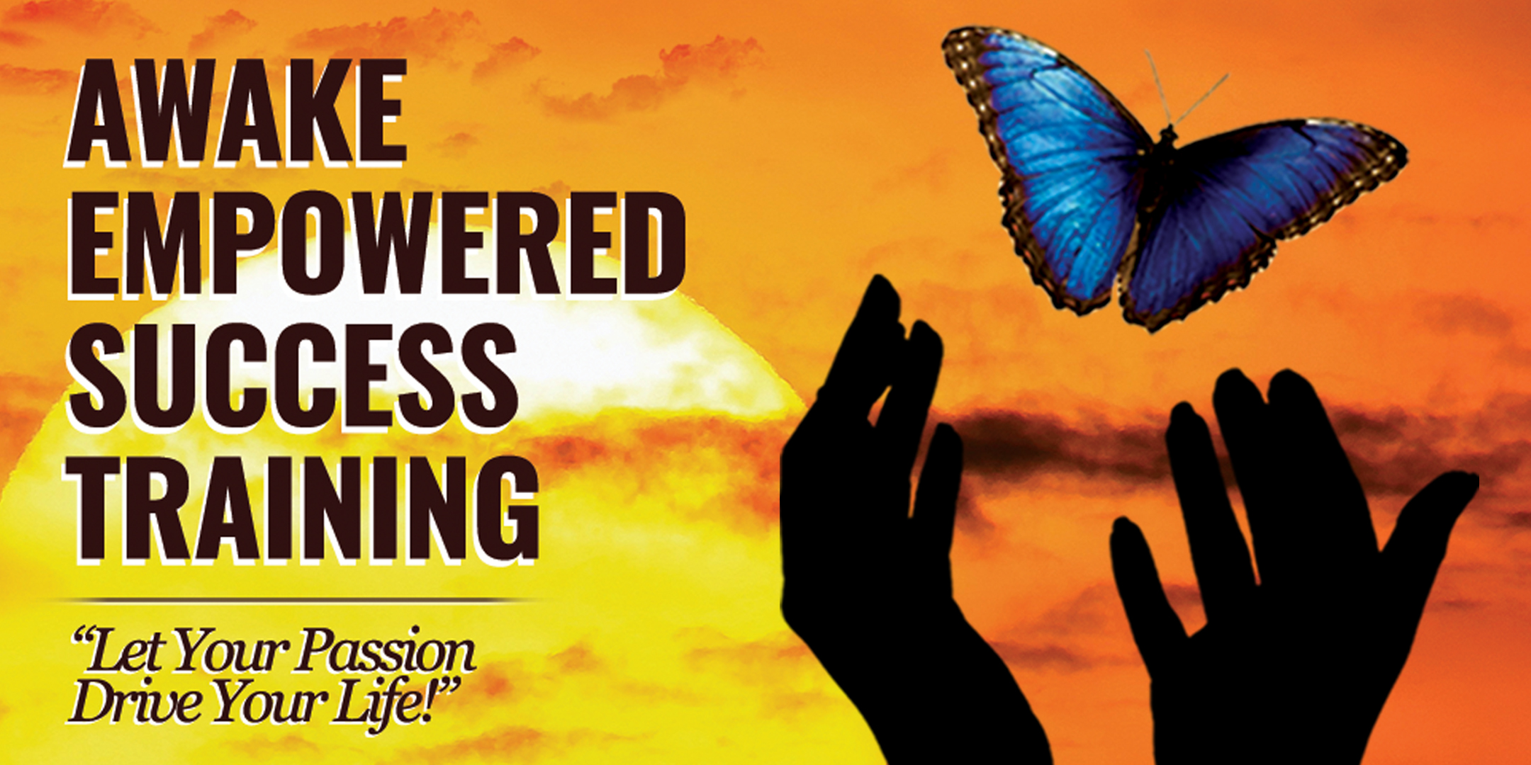 Awake Empowered Success: 3-Day Intensive Training (3/2017)